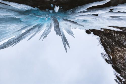 Fly Ice Light Texture Pattern Invertebrate - Free Photo 1