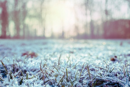 Weather Snow Winter Ice Cold - Free Photo 1