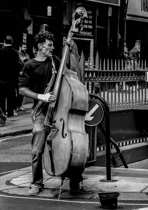 Bass Music Musician Instrument Guitar Musical Cello Musical instrument Stringed instrument - Free Photo 1