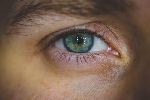 Eyebrow Eye Make Close Skin Face Vision Look See - Free Photo 1