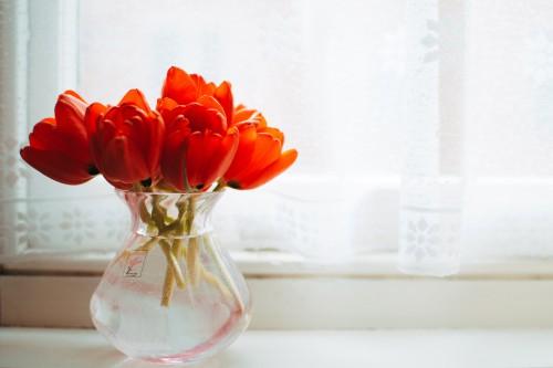 Vase Flower Petal Bouquet Pink Flowers Gift - Free Photo 1
