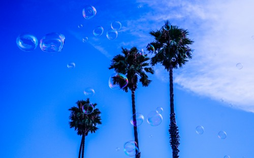 Liquid Drop Water Tree Splash Star Clean Transparent Rain Texture - Free Photo 1