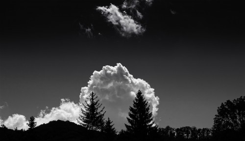 Sky Fir Atmosphere Weather Clouds - Free Photo 1