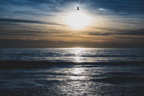 Ocean Sea Sun Sky Beach - Free Photo 1