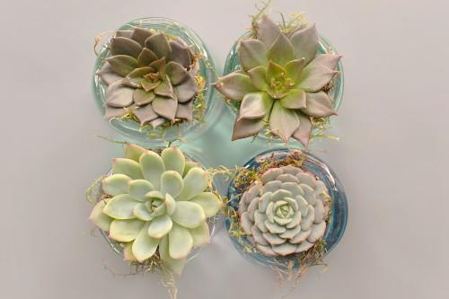 Arabesque Floral Flower Design Decoration Art Pattern Retro - Free Photo 1