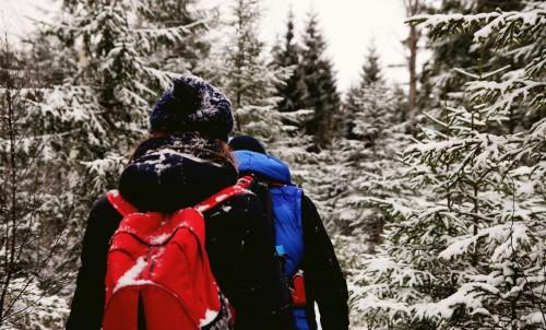 Snow Winter Armor Mountain Shield Cold Outdoor Sport - Free Photo 1