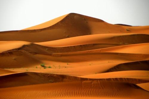 Dune Desert Sand Tract Landscape Dunes Dry Travel Soil Hill - Free Photo 1